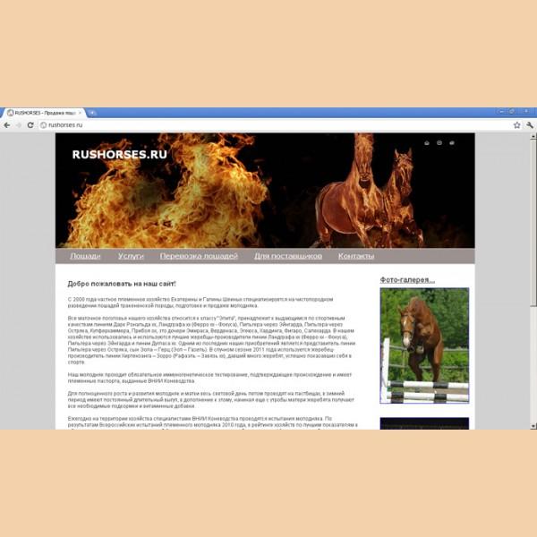 Разработка сайта РуссХорсес